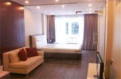 Studio apartment in Mac Dinh Chi street for rent